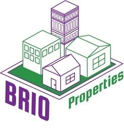 Large brio logo