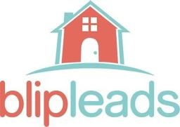 Large blip leads logo large