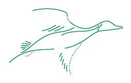 Pintail Property Management Logo