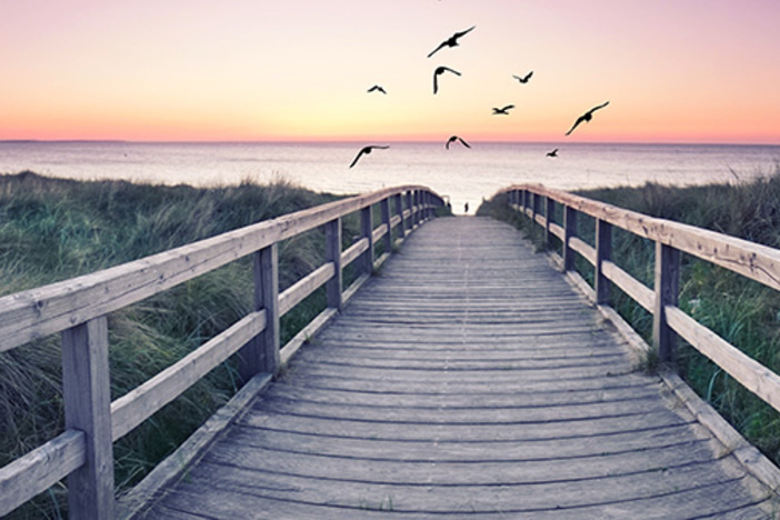 looking out over long wooden footbridge toward ocean during sunrise several birds flying in colorful sky