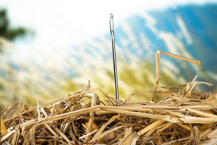 Closeup of Needle in haystack on blurred background