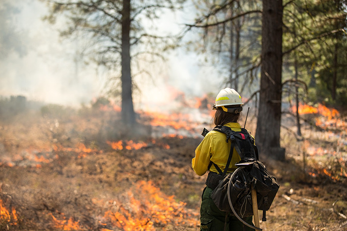 firefighter standing in woods ablaze