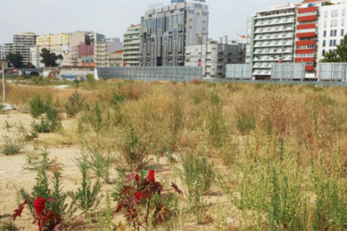 Raw Land Development